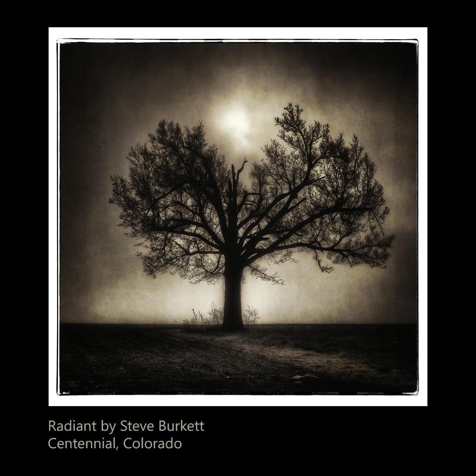 Burkett, Steve - Radiance