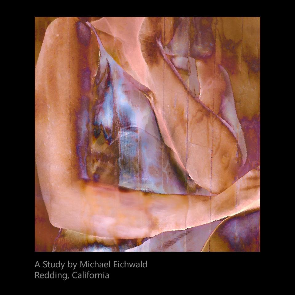 Eichwald, Michael - A Study