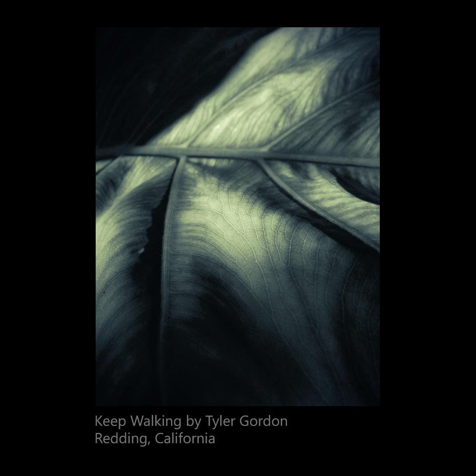 Gordon, Tyler - Keep Walking