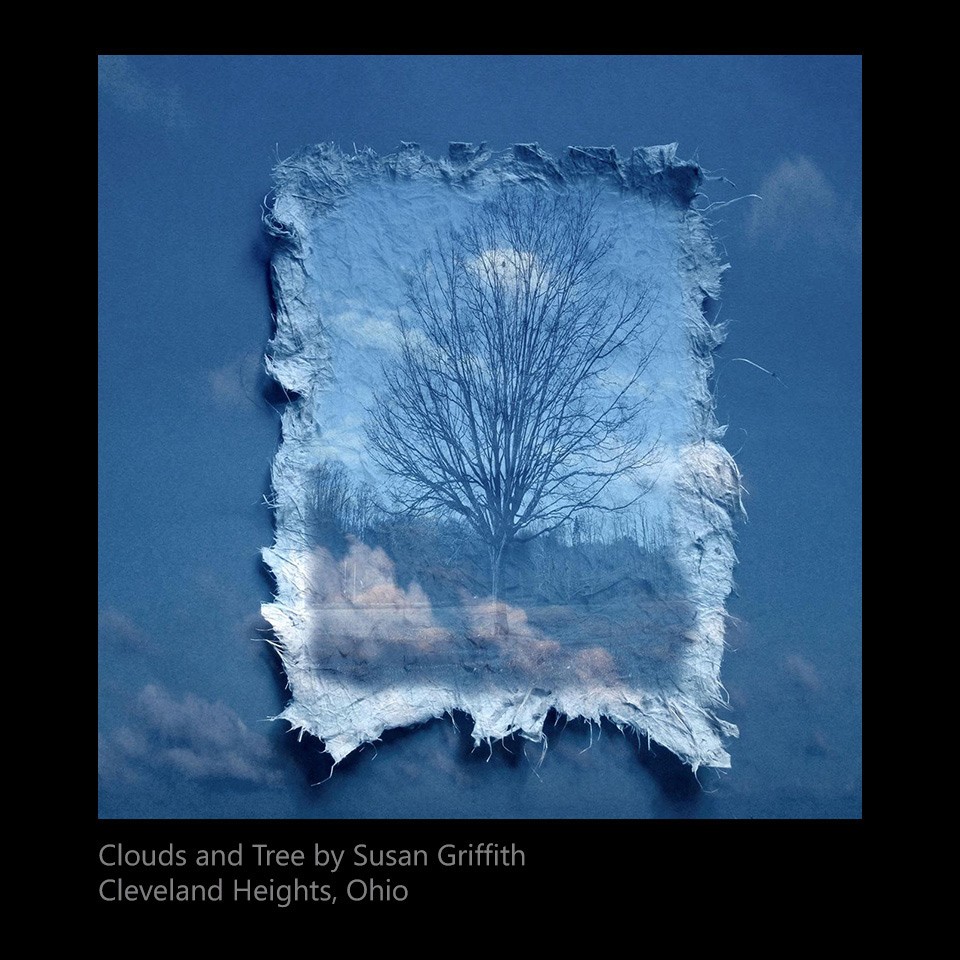 Griffith, Susan - Clouds and Tree