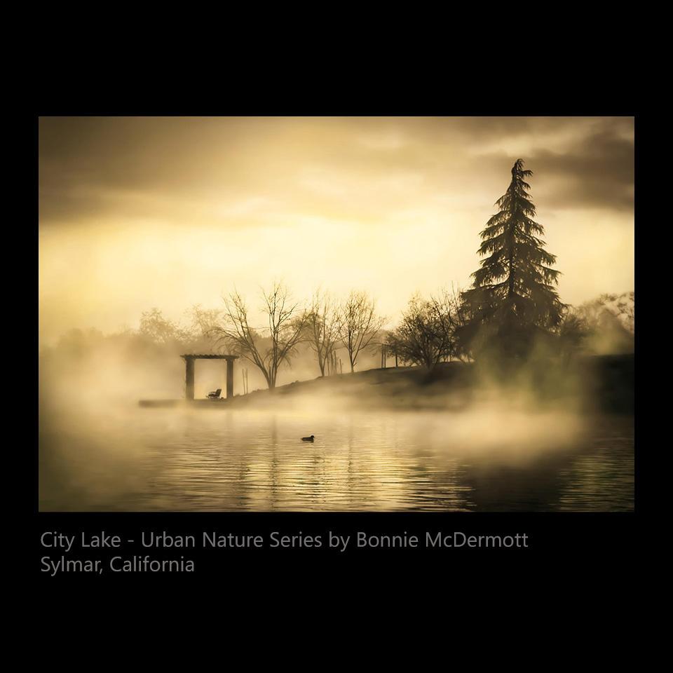 McDermott, Bonnie - City Lake - Urban Nature Series