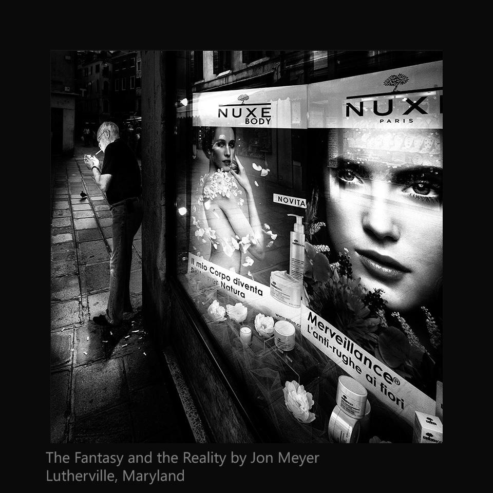 Meyer, Jon - The Fantasy and the Reality