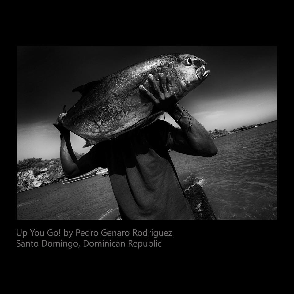 Rodriguez, Pedro Genaro Rodriguez - Up You Go