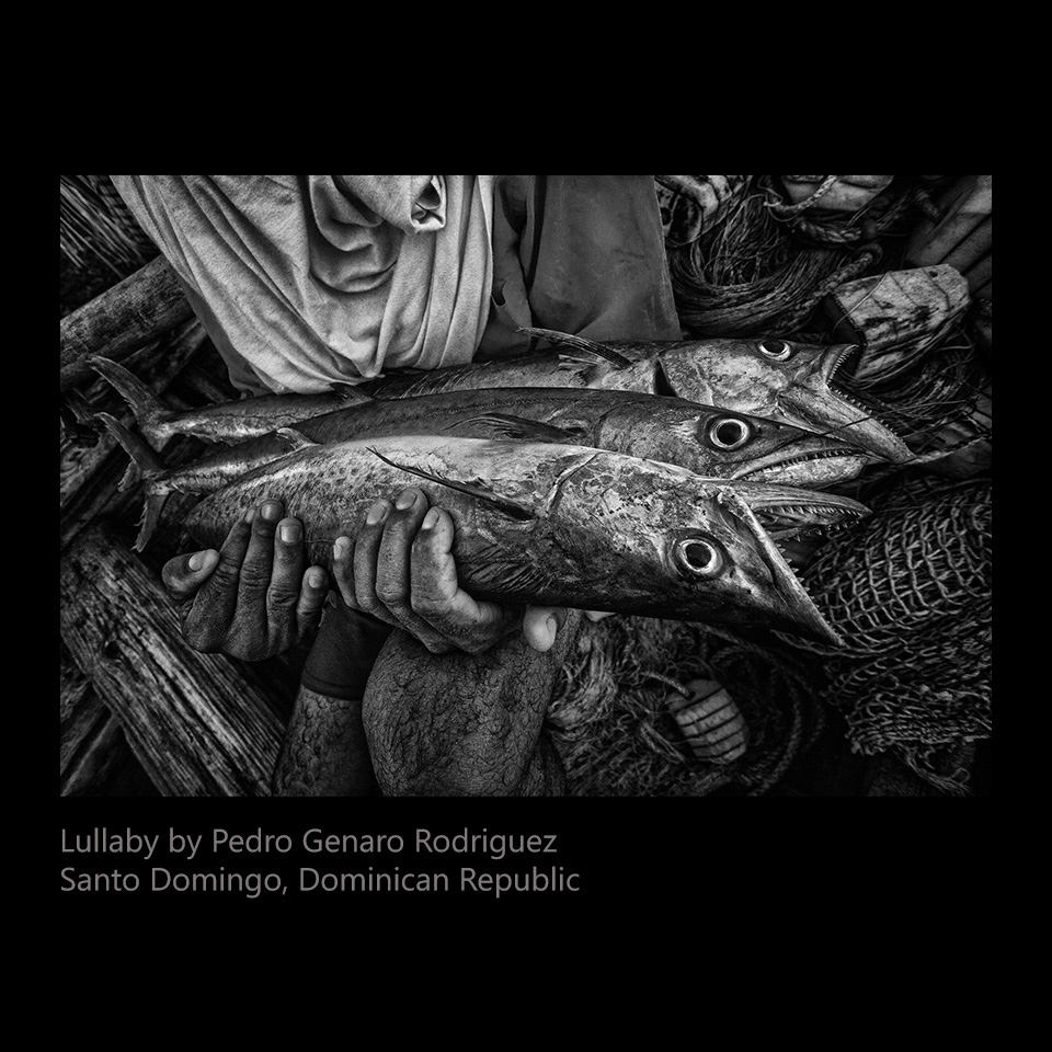 Rodriguez, Pedro Genero - Lullaby