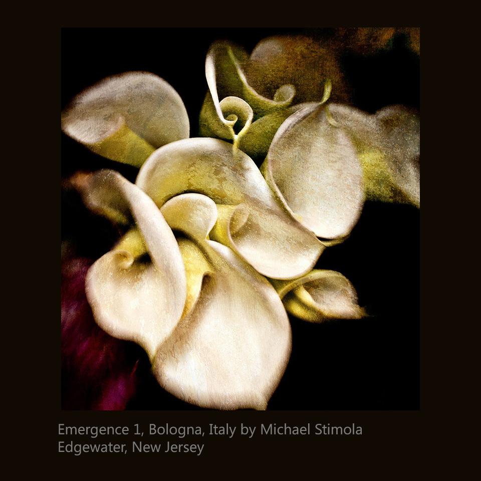 Stimola, Michael - Emergence 1, Bologna, Italy