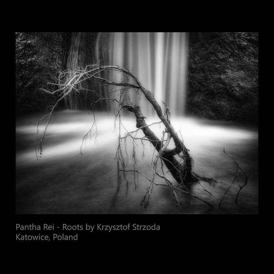Strzoda, Krzysztof - Pantha Rei - Roots